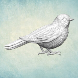 Mold Bird right